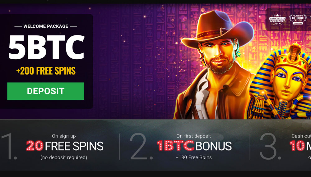 Wizard of oz slots free chips